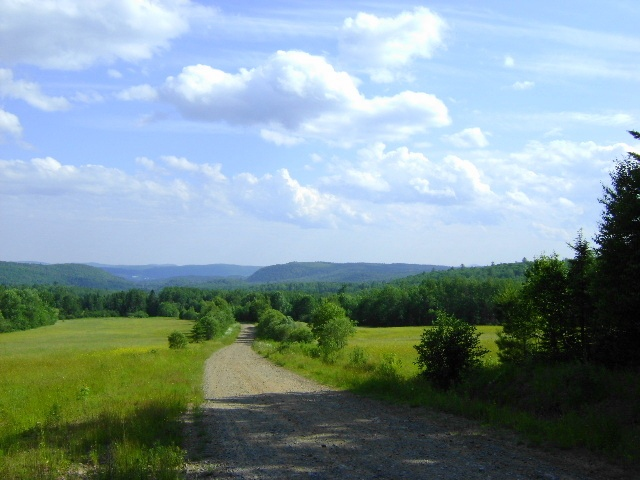 Rural road in New Brunswick