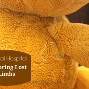Animal Hospital: How to Restore Lost Limbs
